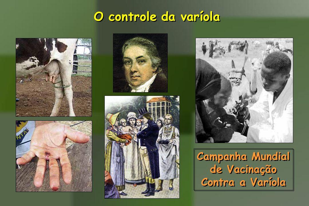 O controle da varíola Campanha Mundial de Vacinação Contra a Varíola