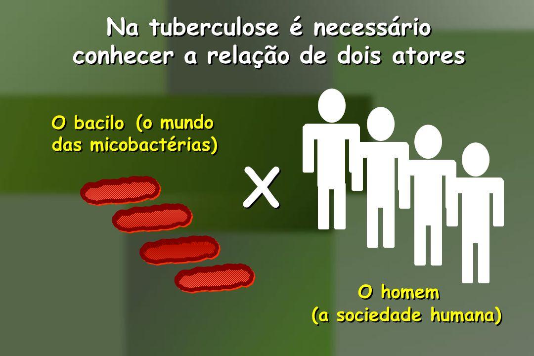 Na tuberculose é necessário conhecer a relação de dois atores