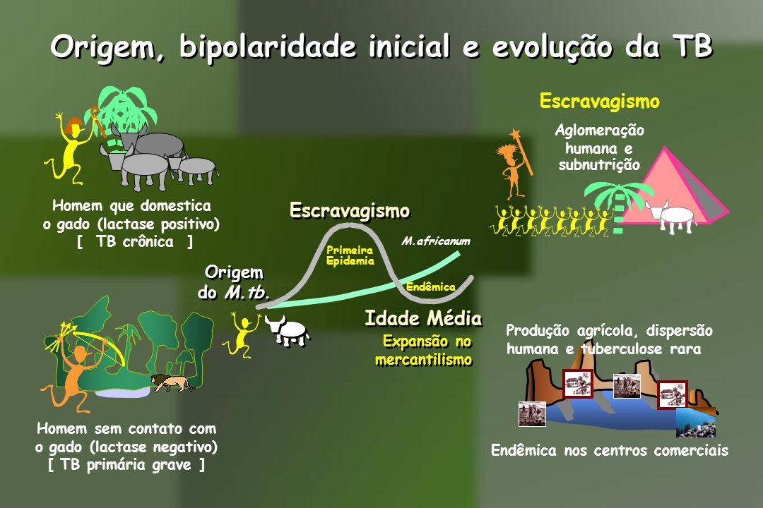 Origem, bipolaridade inicial e evolução da TB