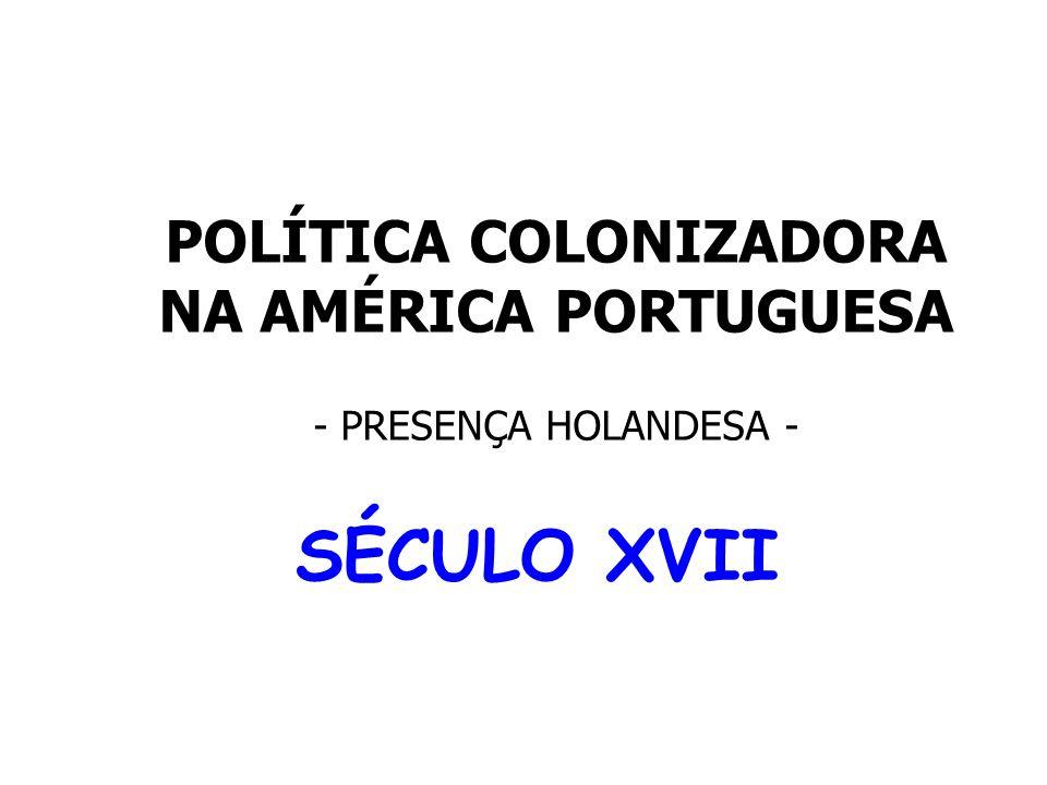 POLÍTICA COLONIZADORA NA AMÉRICA PORTUGUESA - PRESENÇA HOLANDESA -