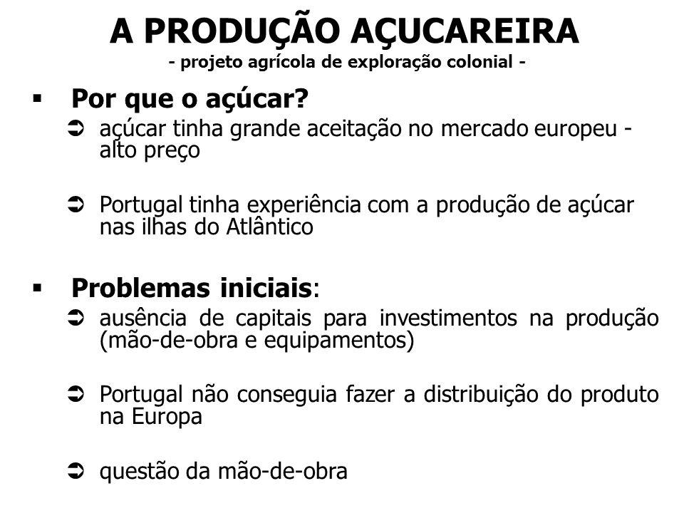 A PRODUÇÃO AÇUCAREIRA - projeto agrícola de exploração colonial -