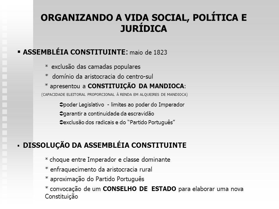 ORGANIZANDO A VIDA SOCIAL, POLÍTICA E JURÍDICA