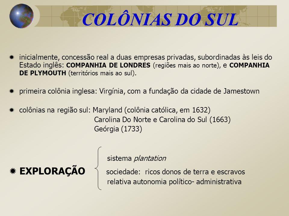 COLÔNIAS DO SUL EXPLORAÇÃO sociedade: ricos donos de terra e escravos