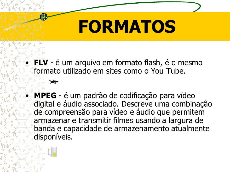 FORMATOS FLV - é um arquivo em formato flash, é o mesmo formato utilizado em sites como o You Tube.
