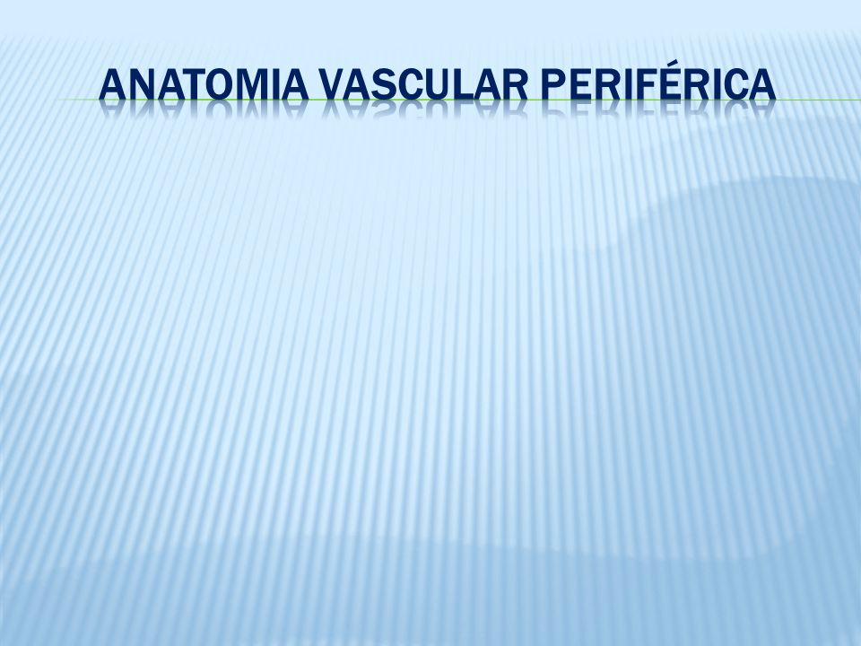 Anatomia Vascular Periférica