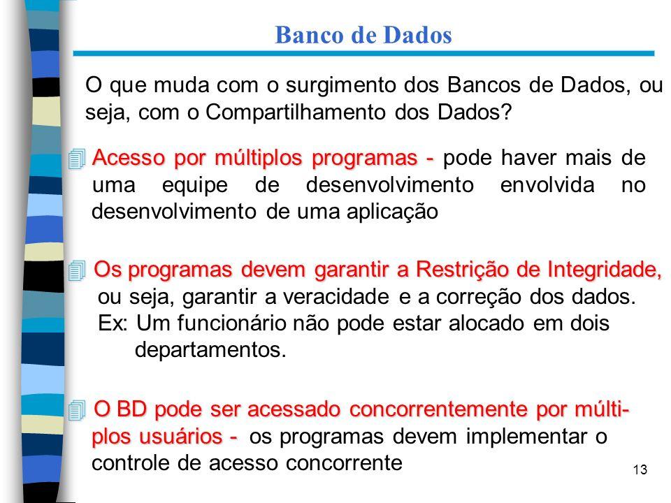 Banco de Dados O que muda com o surgimento dos Bancos de Dados, ou seja, com o Compartilhamento dos Dados
