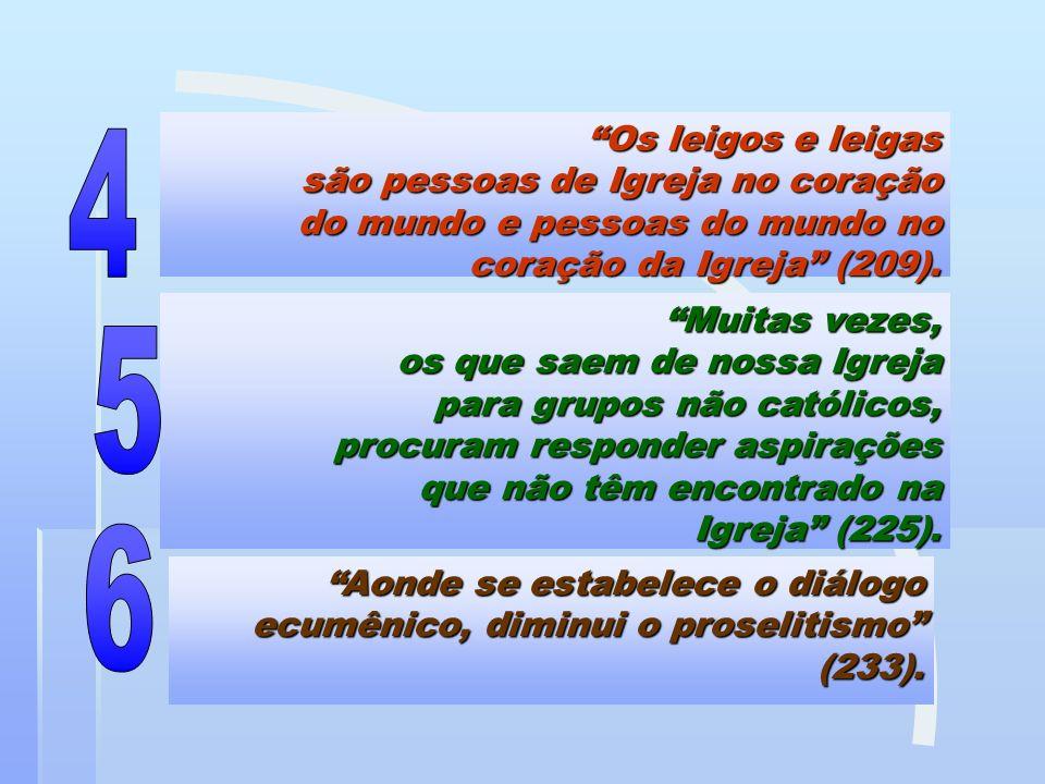 Os leigos e leigas são pessoas de Igreja no coração do mundo e pessoas do mundo no coração da Igreja (209).