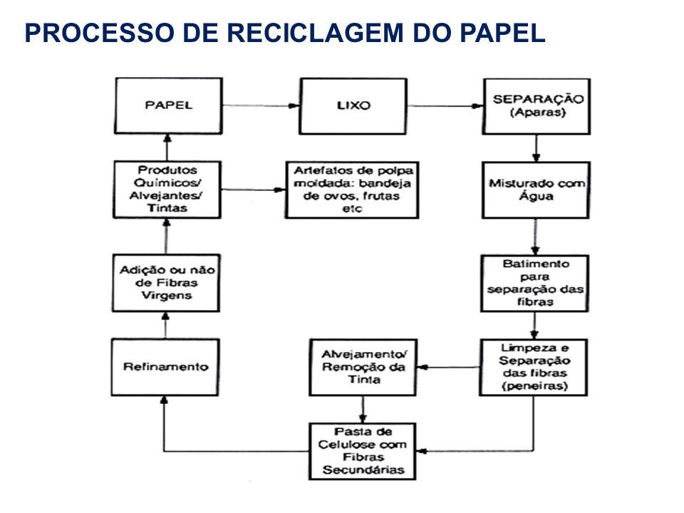 PROCESSO DE RECICLAGEM DO PAPEL