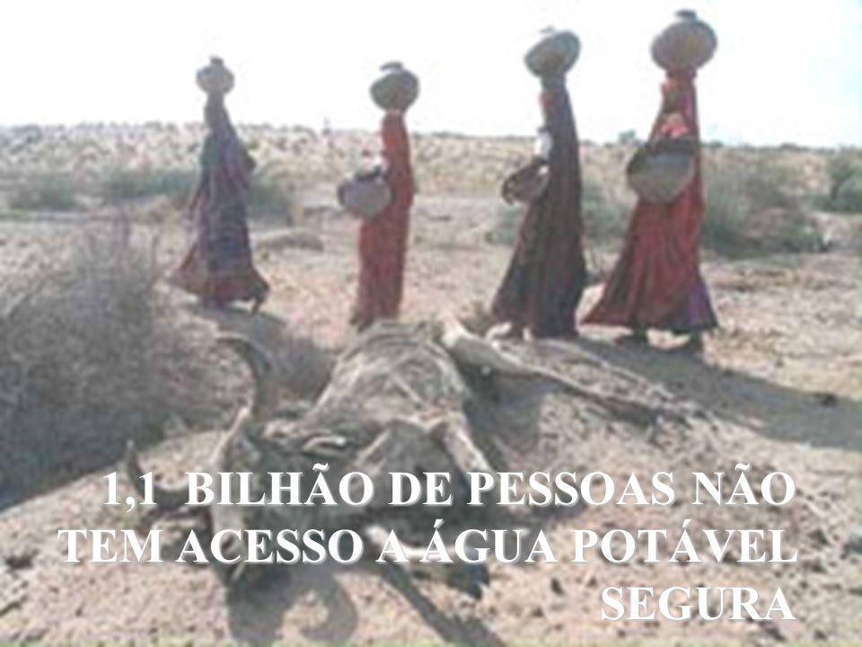 1,1 BILHÃO DE PESSOAS NÃO TEM ACESSO A ÁGUA POTÁVEL SEGURA