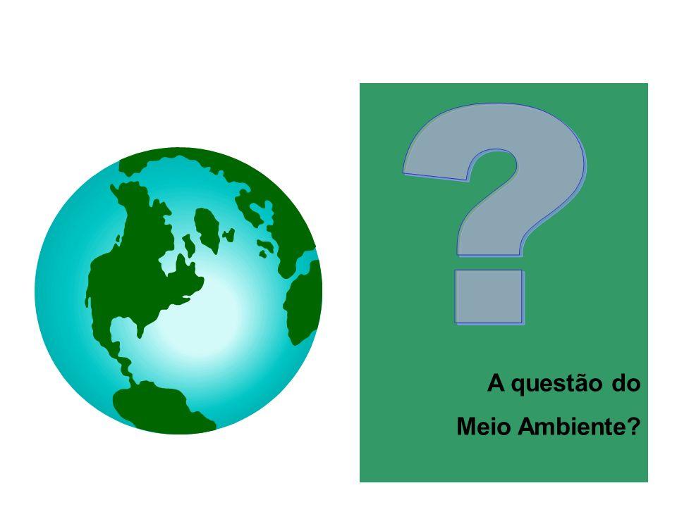 A questão do Meio Ambiente