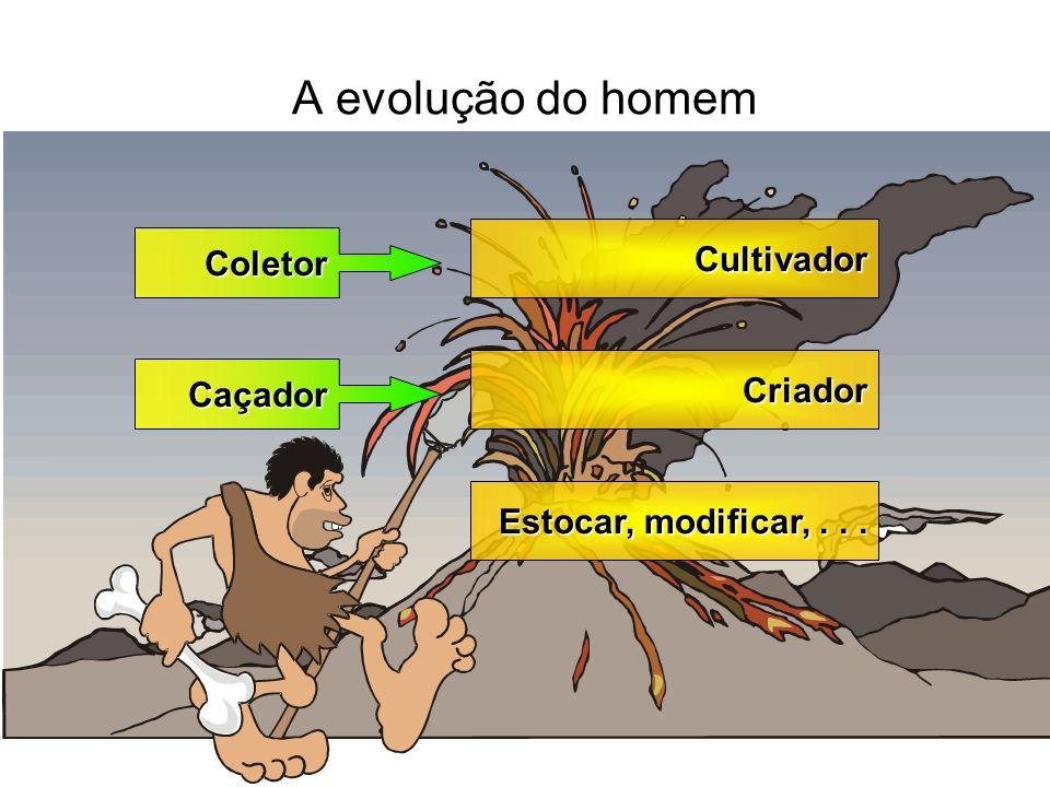A evolução do homem Cultivador Coletor Criador Caçador