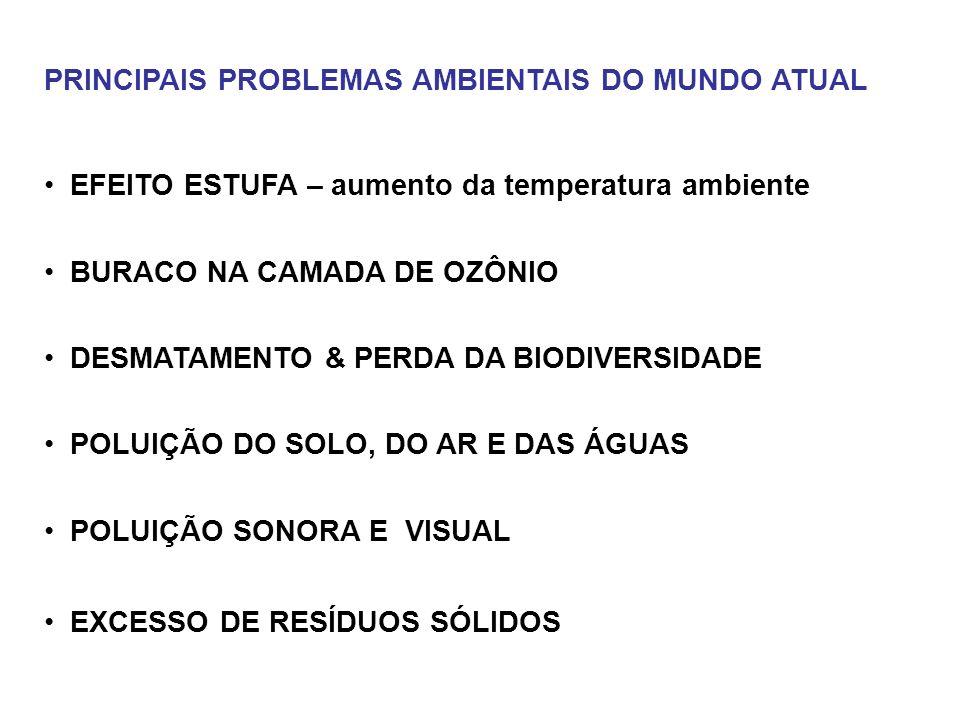 PRINCIPAIS PROBLEMAS AMBIENTAIS DO MUNDO ATUAL