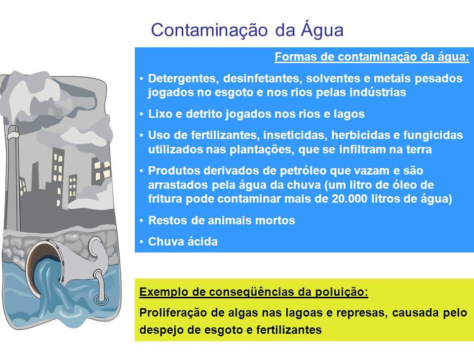 Contaminação da Água Formas de contaminação da água: