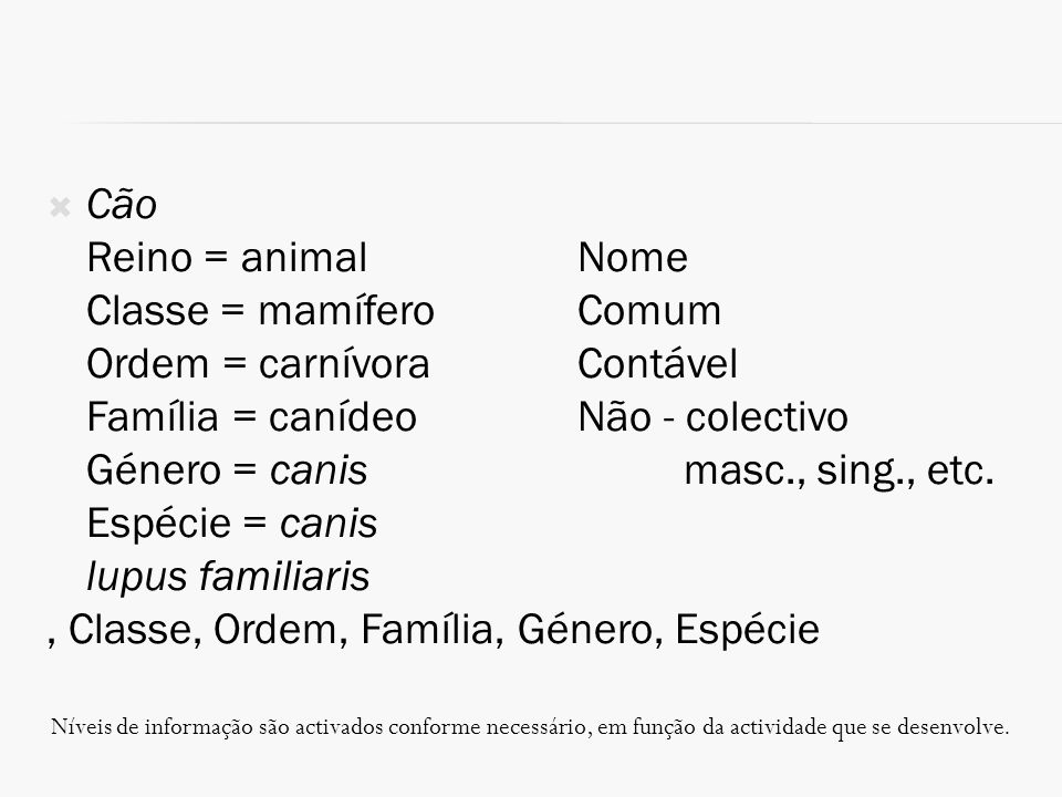 Classe = mamífero Comum Ordem = carnívora Contável