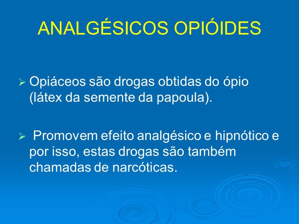 ANALGÉSICOS OPIÓIDESOpiáceos são drogas obtidas do ópio (látex da semente da papoula).
