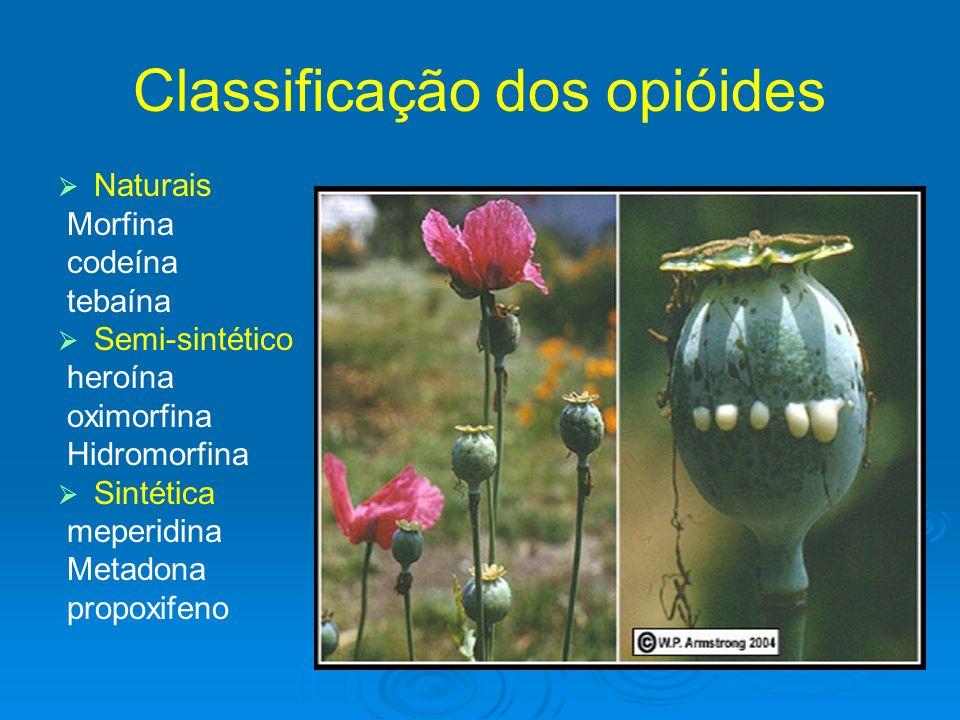 Classificação dos opióides