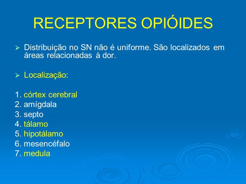 RECEPTORES OPIÓIDES Distribuição no SN não é uniforme. São localizados em áreas relacionadas à dor.