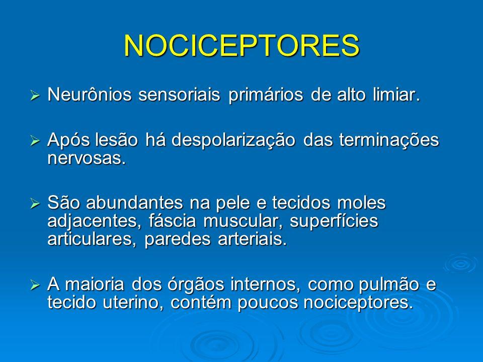 NOCICEPTORES Neurônios sensoriais primários de alto limiar.
