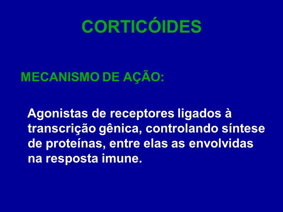CORTICÓIDES MECANISMO DE AÇÃO: