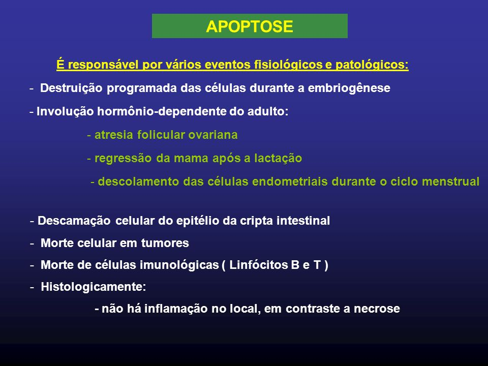 APOPTOSE É responsável por vários eventos fisiológicos e patológicos: