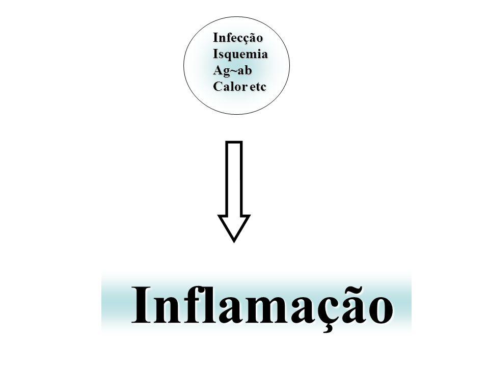 Infecção Isquemia Ag~ab Calor etc Inflamação
