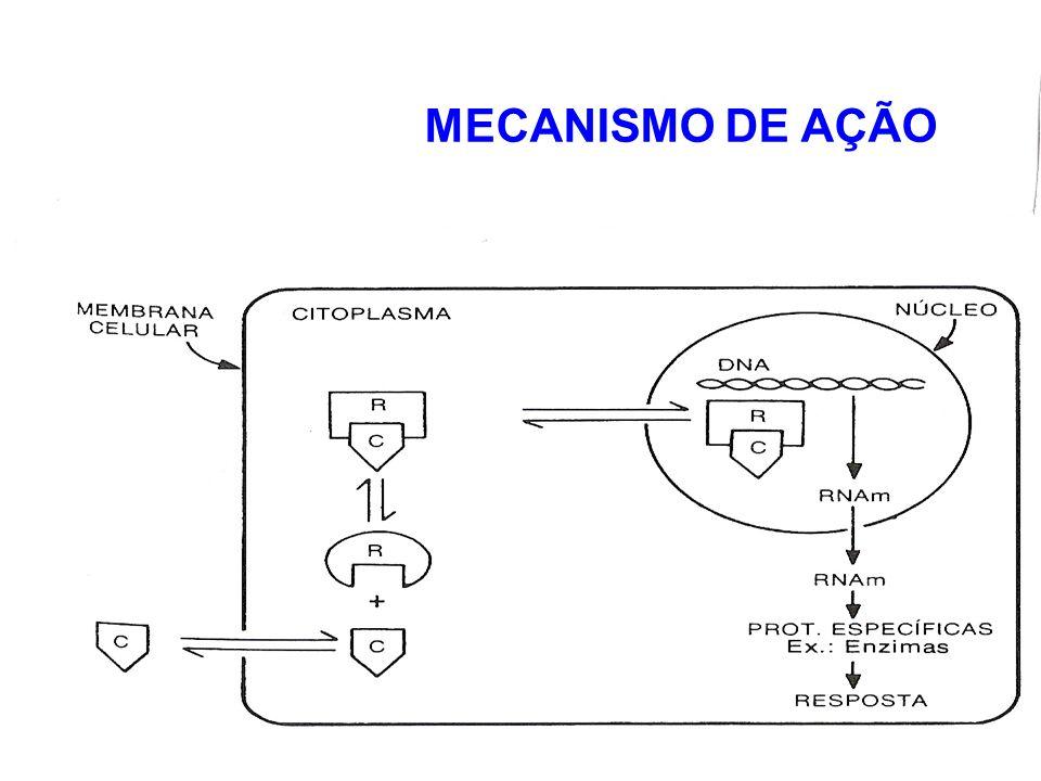 MECANISMO DE AÇÃO