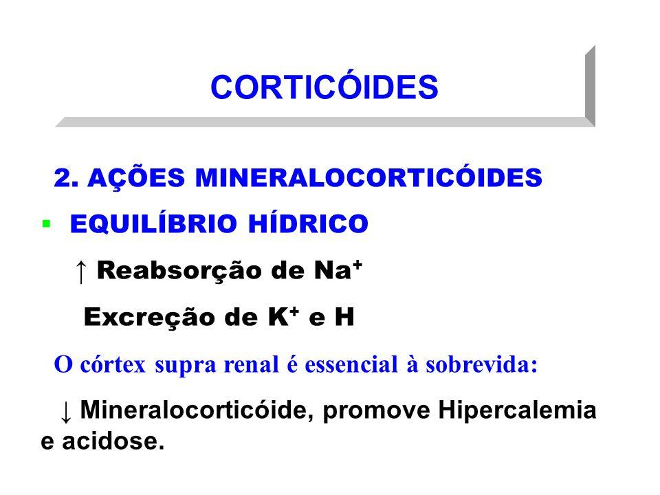 CORTICÓIDES 2. AÇÕES MINERALOCORTICÓIDES EQUILÍBRIO HÍDRICO