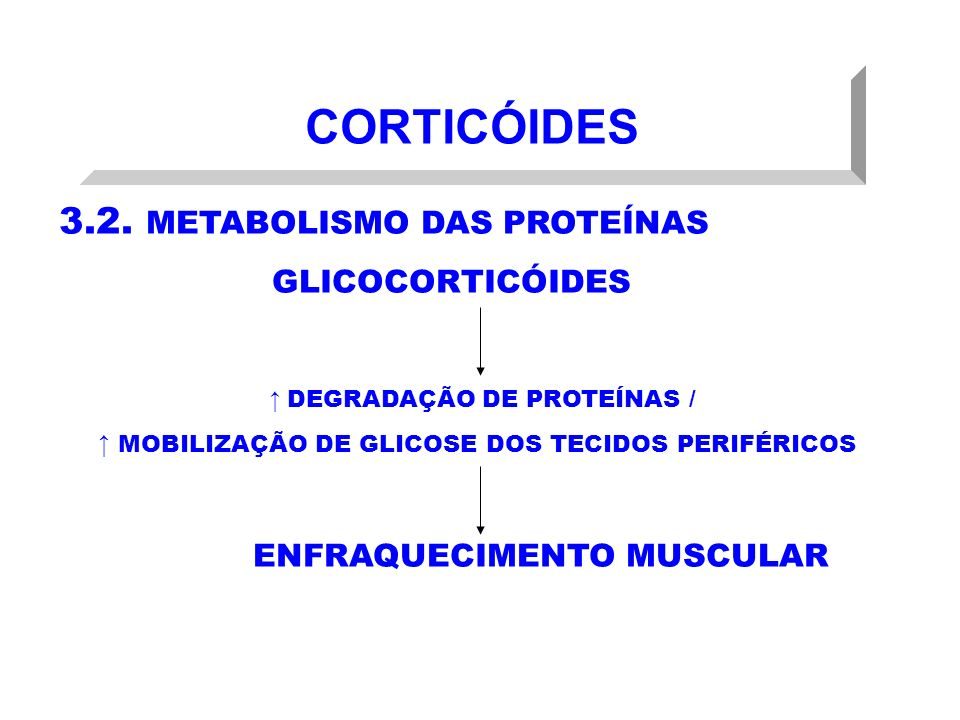 CORTICÓIDES 3.2. METABOLISMO DAS PROTEÍNAS GLICOCORTICÓIDES