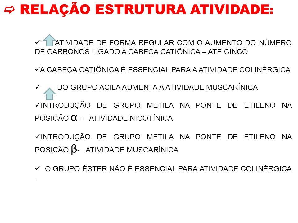  RELAÇÃO ESTRUTURA ATIVIDADE: