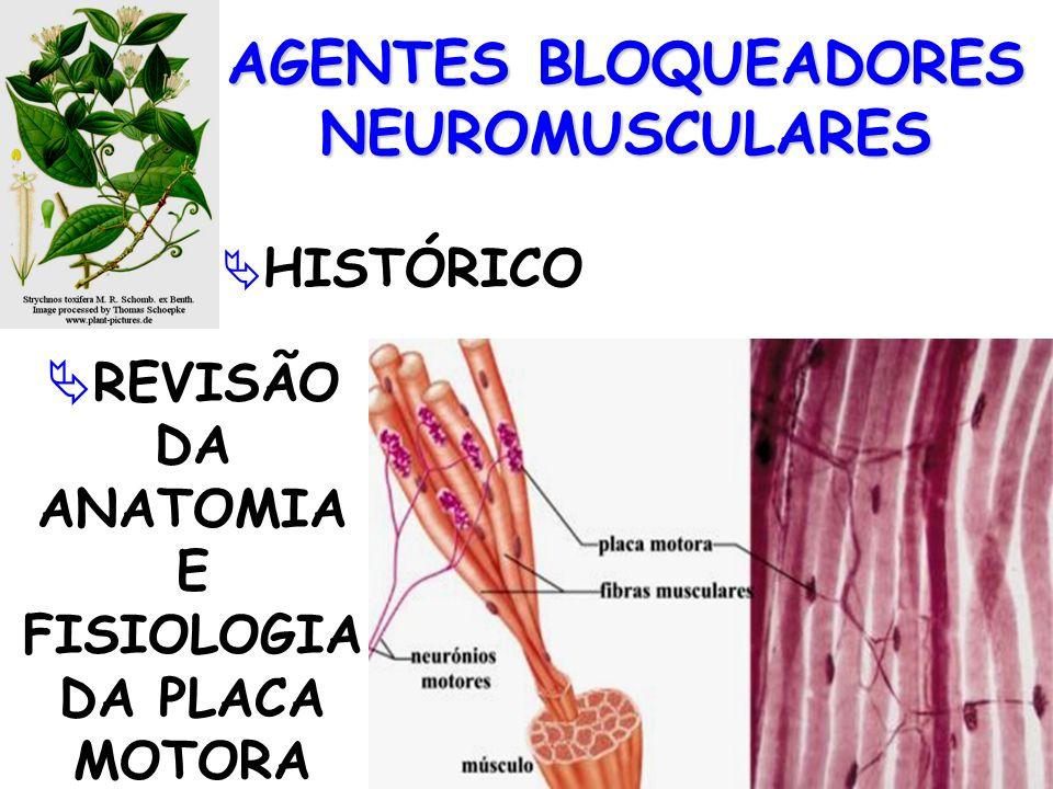 AGENTES BLOQUEADORES NEUROMUSCULARES