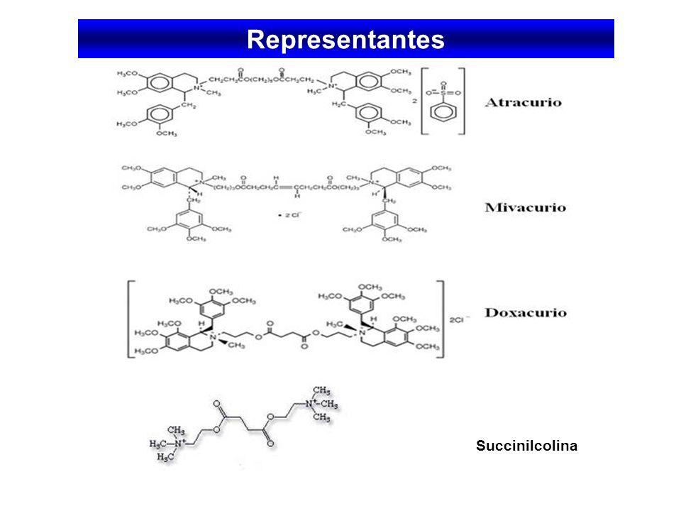 Representantes Succinilcolina