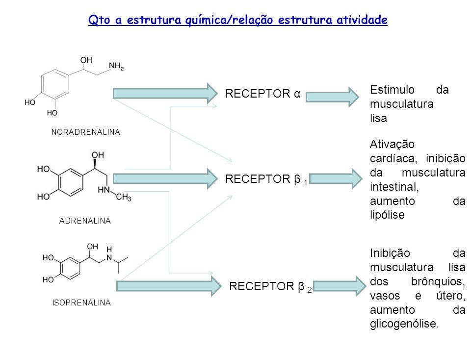 Qto a estrutura química/relação estrutura atividade