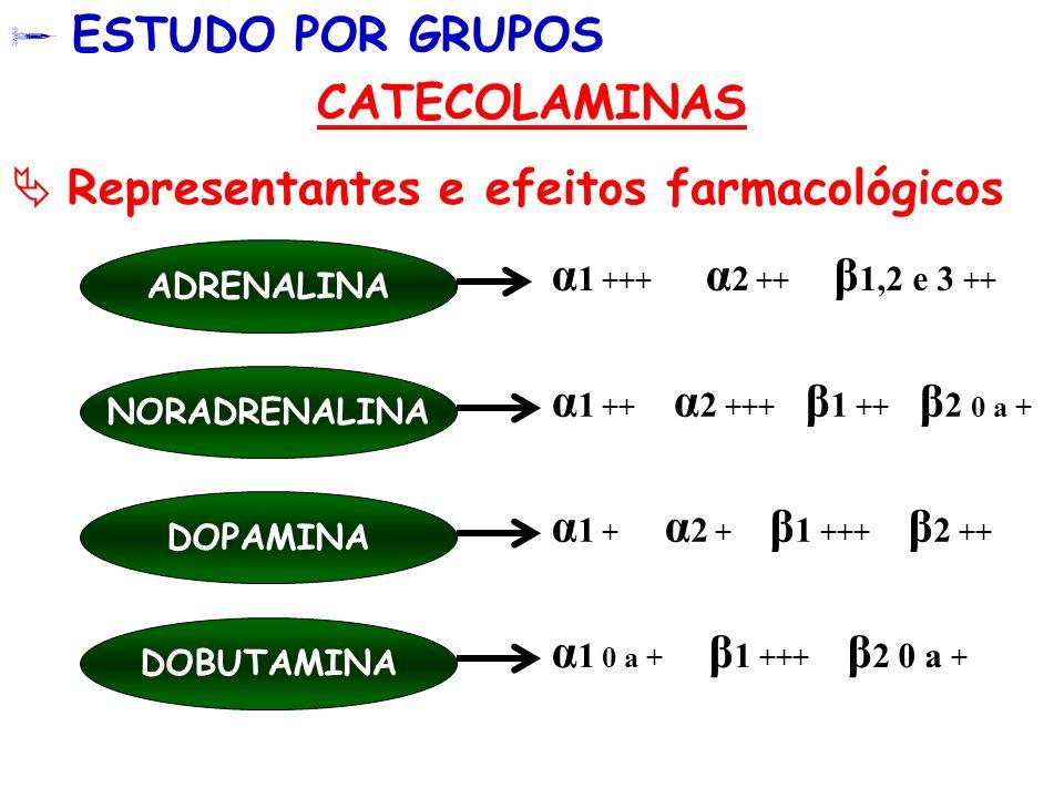  Representantes e efeitos farmacológicos