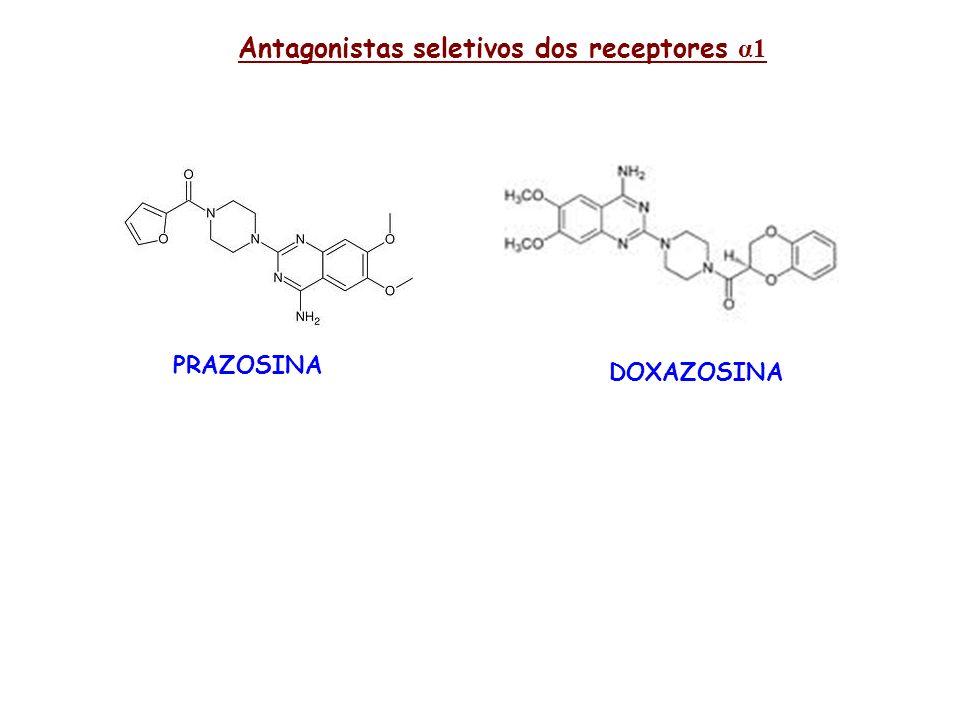 Antagonistas seletivos dos receptores α1