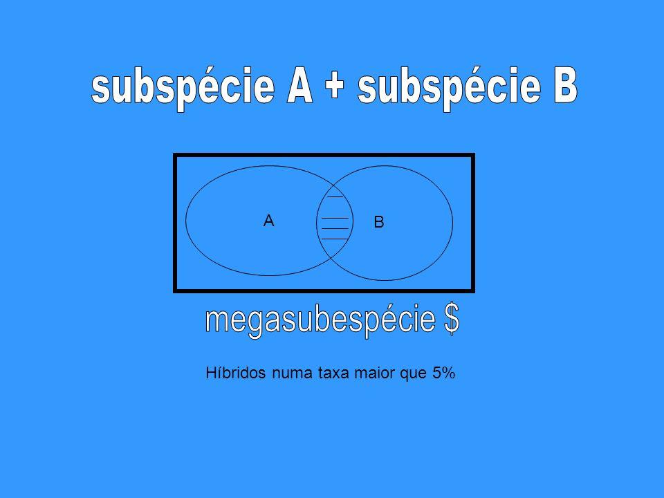 subspécie A + subspécie B