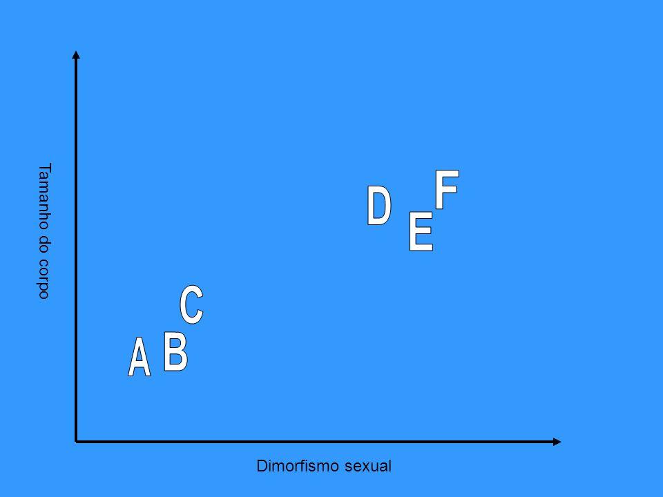 Tamanho do corpo F D E C B A Dimorfismo sexual