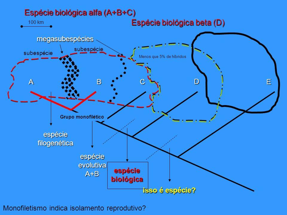 Espécie biológica alfa (A+B+C) Espécie biológica beta (D)