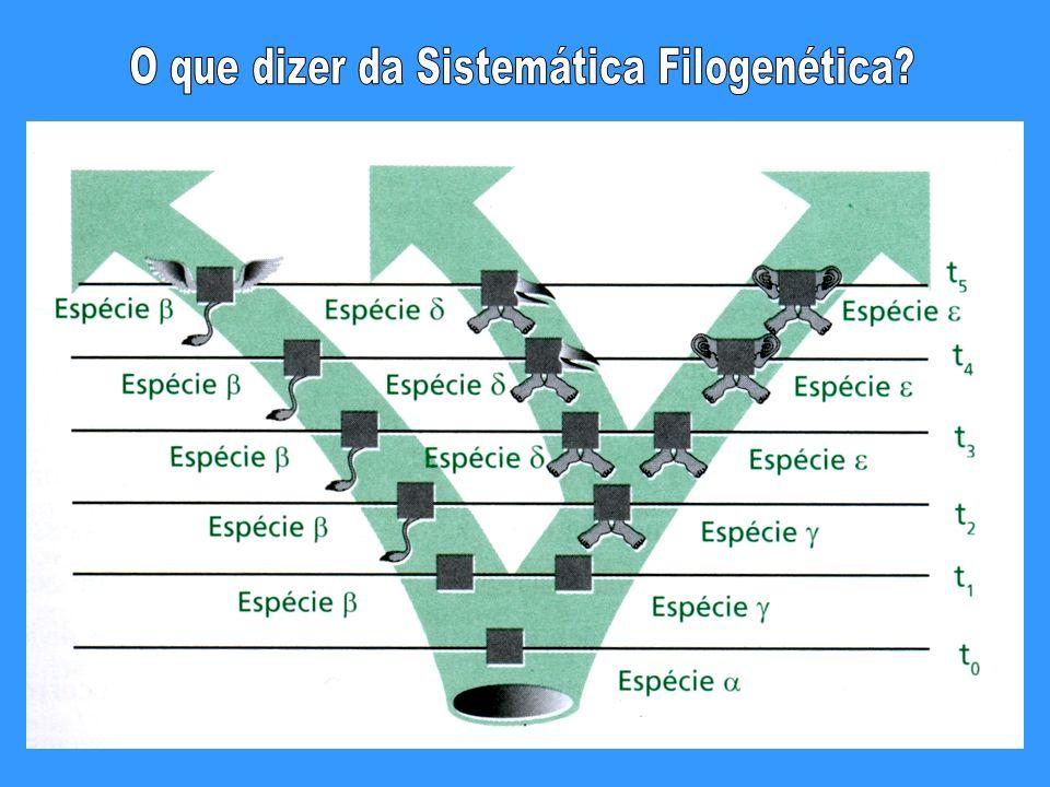 O que dizer da Sistemática Filogenética