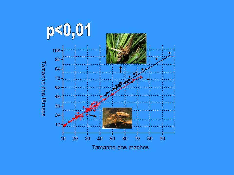 p<0,01 Tamanho das fêmeas Tamanho dos machos