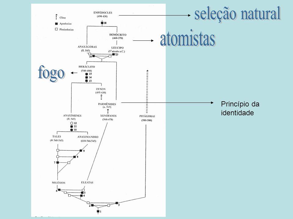 seleção natural atomistas fogo Princípio da identidade