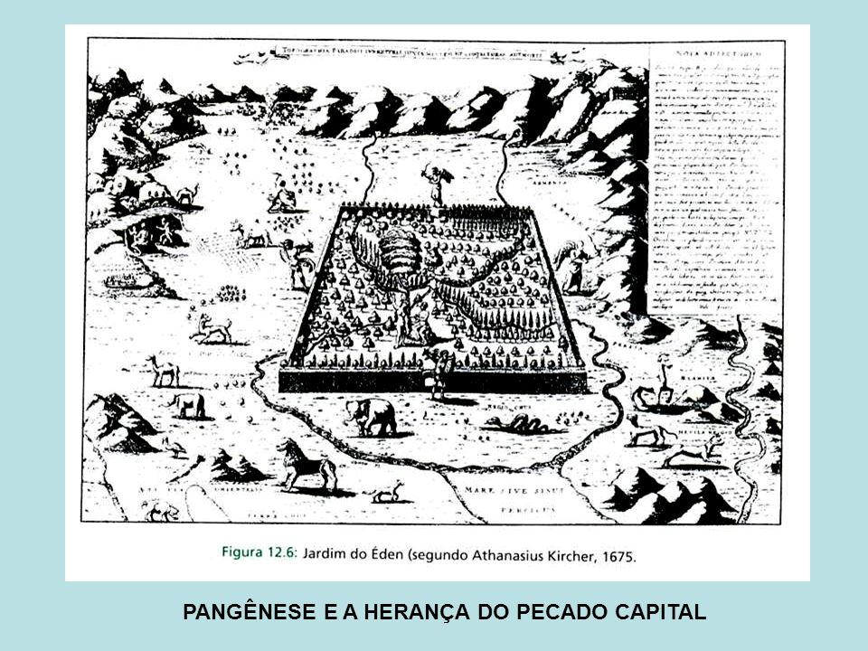 PANGÊNESE E A HERANÇA DO PECADO CAPITAL