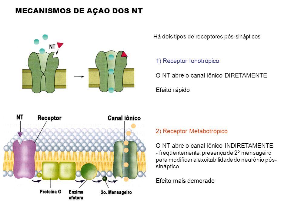 MECANISMOS DE AÇAO DOS NT