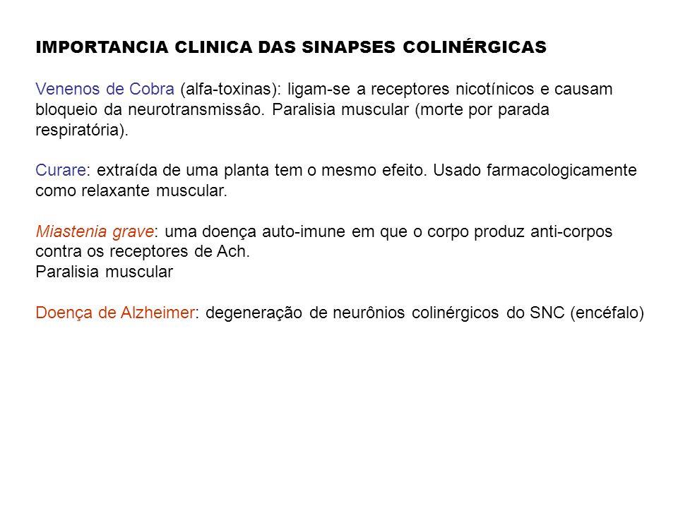 IMPORTANCIA CLINICA DAS SINAPSES COLINÉRGICAS