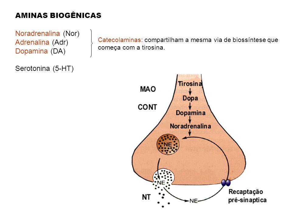 AMINAS BIOGÊNICAS Noradrenalina (Nor) Adrenalina (Adr) Dopamina (DA)