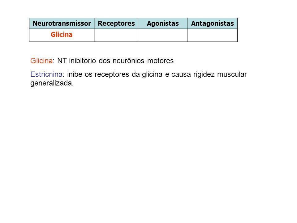 Glicina: NT inibitório dos neurônios motores