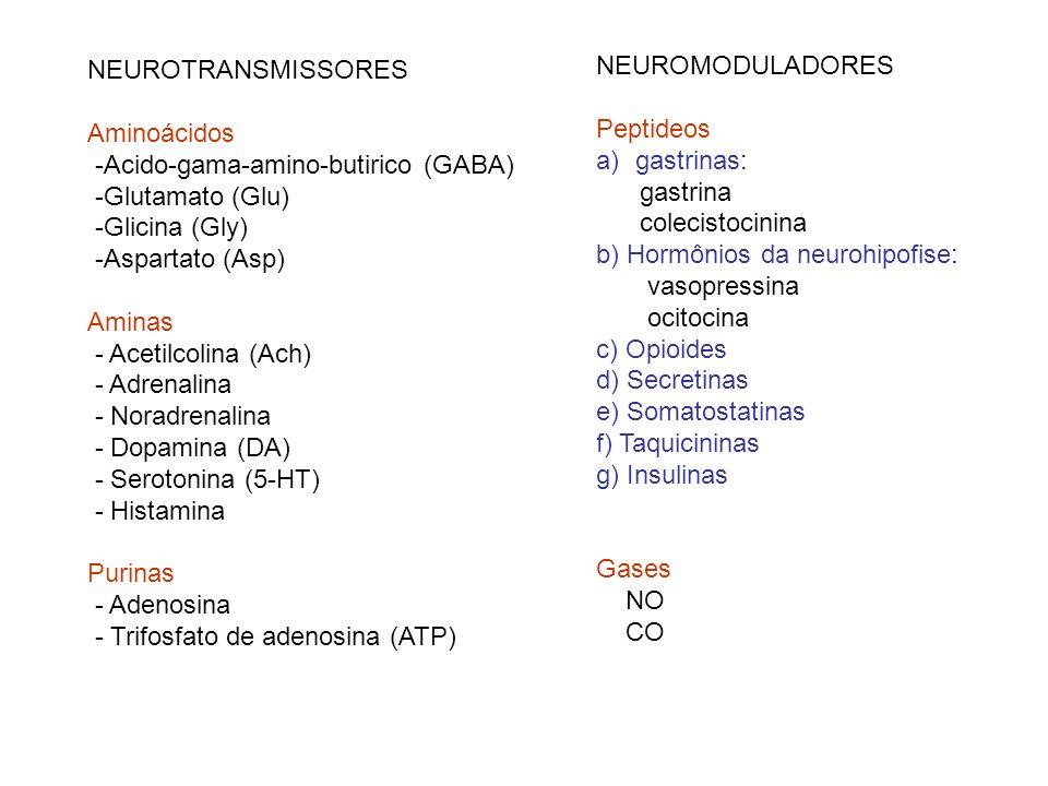 NEUROTRANSMISSORES Aminoácidos. -Acido-gama-amino-butirico (GABA) -Glutamato (Glu) -Glicina (Gly)