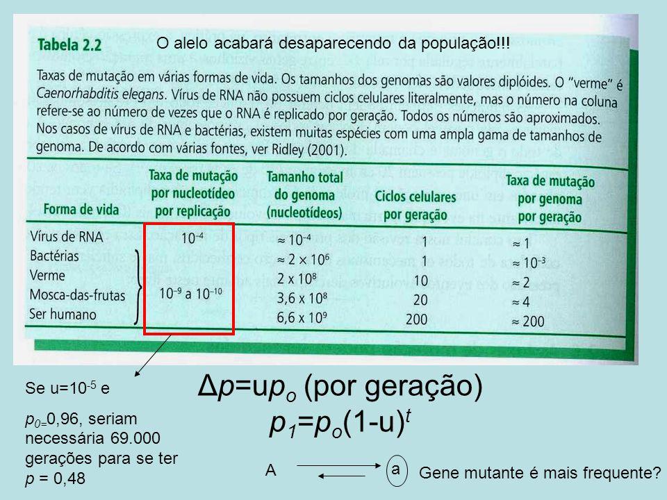 Δp=upo (por geração) p1=po(1-u)t