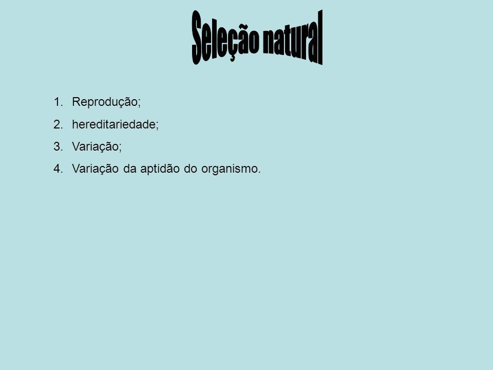 Seleção natural Reprodução; hereditariedade; Variação;