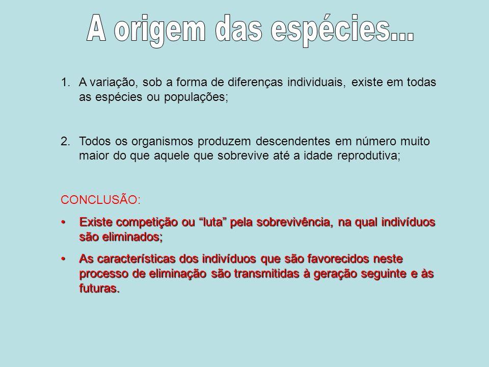A origem das espécies... A variação, sob a forma de diferenças individuais, existe em todas as espécies ou populações;