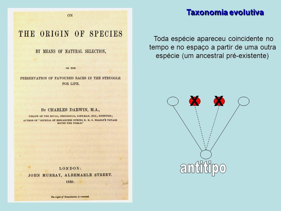 X X antitipo Taxonomia evolutiva Toda espécie apareceu coincidente no